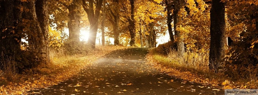Autumn_Forest_facebook_cover_1345920789
