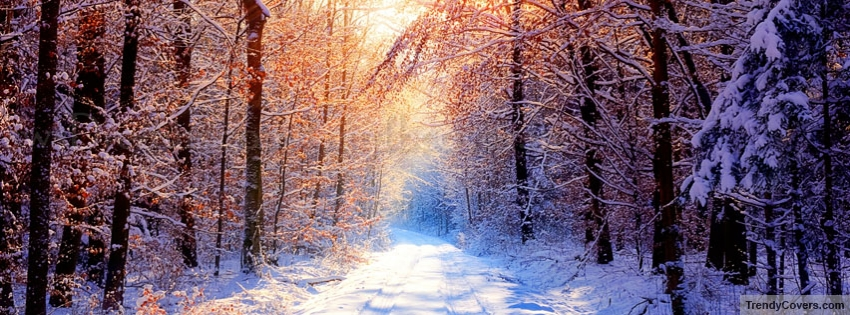 winter_facebook_cover_1355907551
