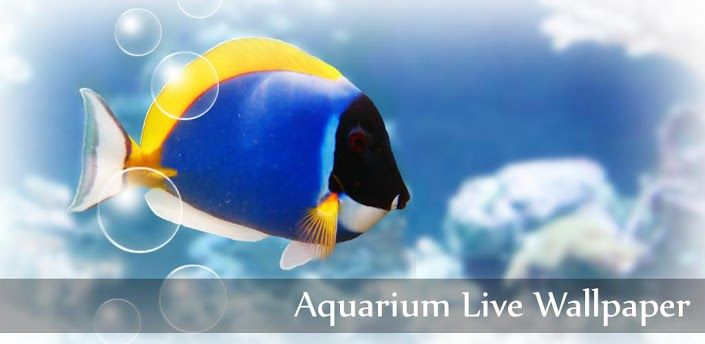 Aquarium Free Live_ Wallpaper
